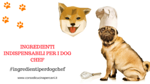 ingredienti indispensabili per i dog chef
