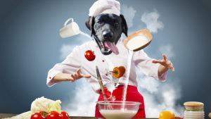 ingredienti dog chef